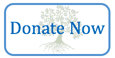 DONATE NOW tree button smaller